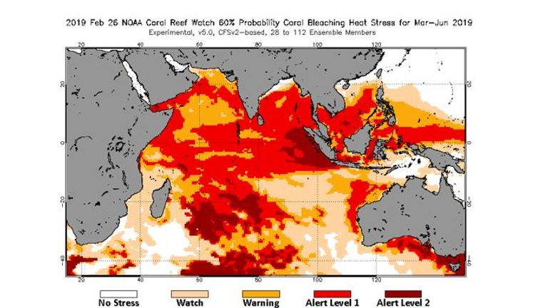 Predicted coral bleaching in the coming weeks. Pic: NOAA Coral Reef Watch
