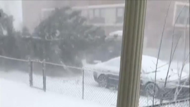 Tree falls on parked vehicle during Colorado 'bomb cyclone'