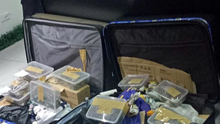 The unclaimed luggage arrived from Hong Kong. Pic: Facebook/Bureau of Customs NAIA