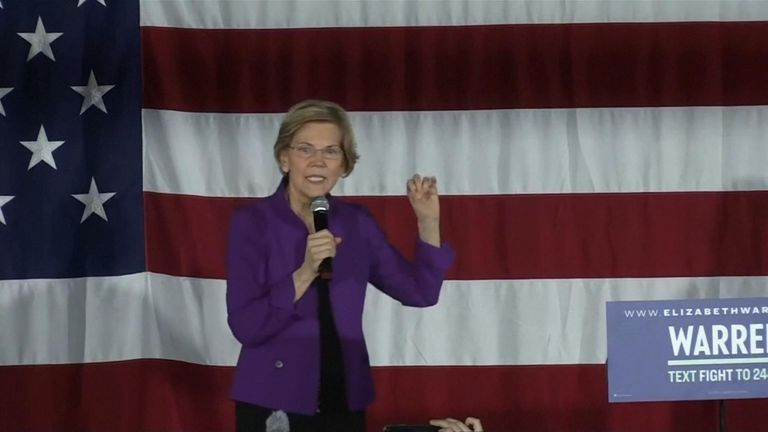 Senator Elizabeth Warren wants to split up tech companies