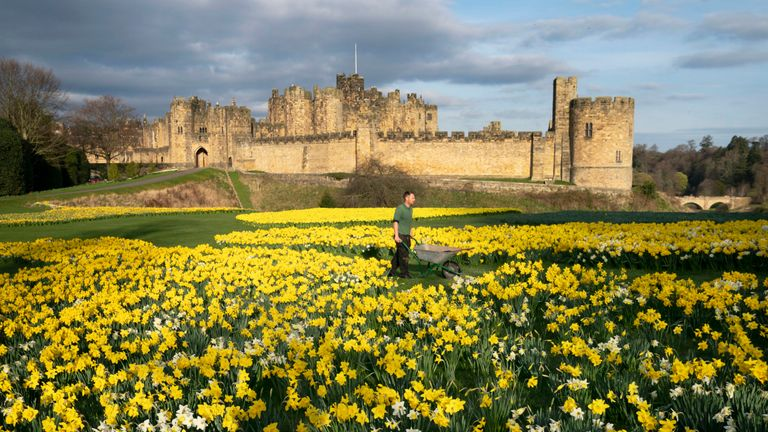 Alnwick Castle basks in the sunshine in Northumberland