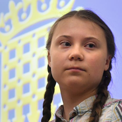 Greta Thunberg tells MPs: 'Our future's been sold'