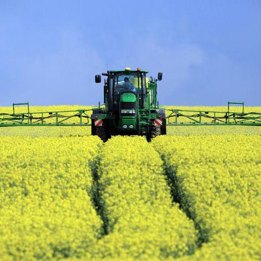 'Climate activists should embrace GM crops solution'