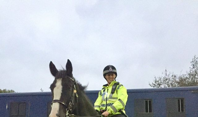 Police horse dies after being impaled by metal pole at football match