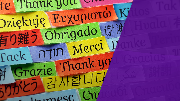 Sky Views: When Brits speak in foreign languages don't reply in English
