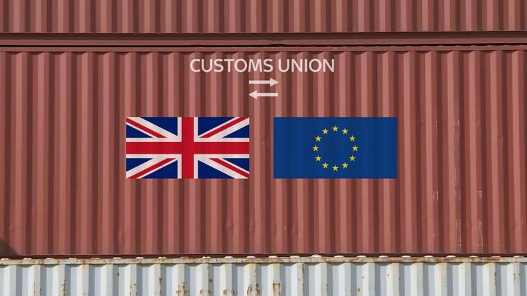 MPs are split over whether Britain should remain in some form of customs union with the EU as they try to find a course forward.