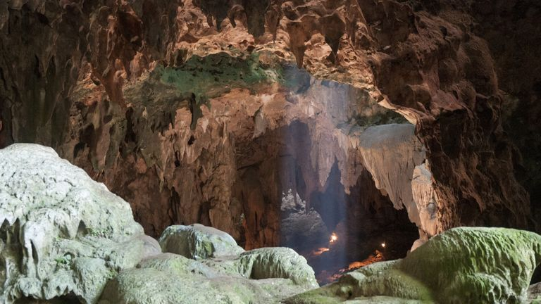 Bones found in cave reveal new human species