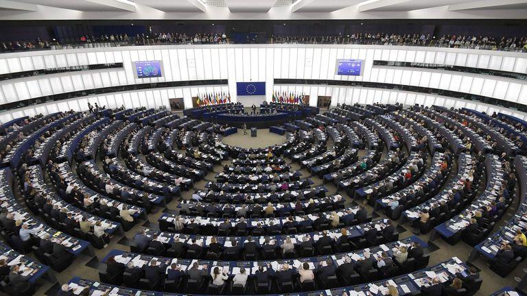 Europarlamenttivaalit Ehdokkaat