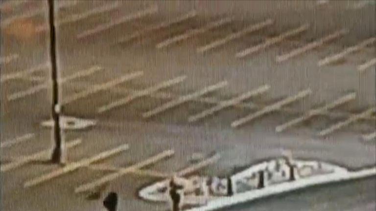Goose attacks woman in university car park
