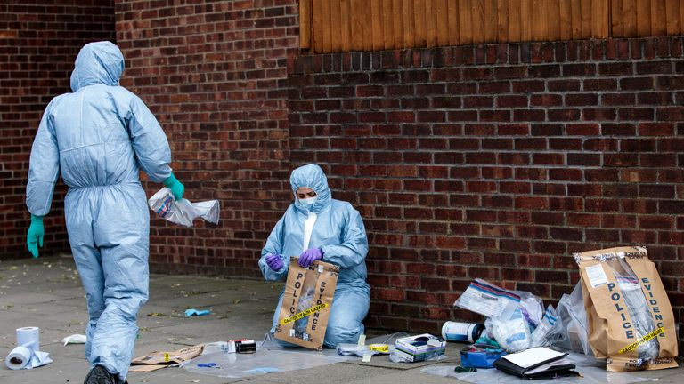 Forensics teams work at the scene of a stabbing in Edmonton