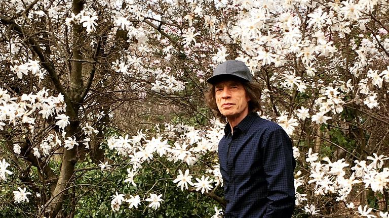 Mick Jagger captioned the photo 'a walk in the park!'. Pic: Mick Jagger