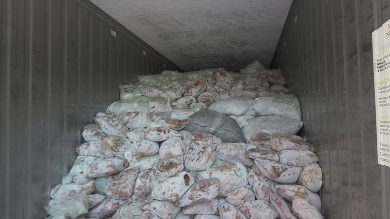 Roughly 36,000 pangolins are believed to have been killed for the single shipment