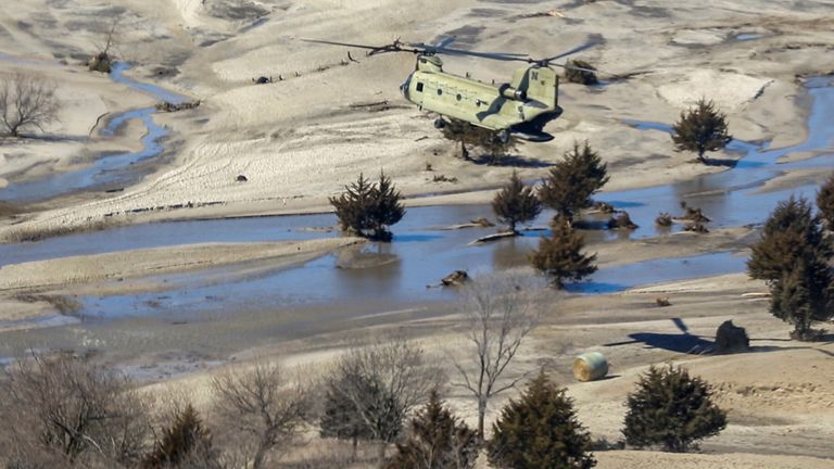 The National Guard drops bales of hay to cattle isolated by flooding in Richland, Nebraska