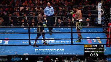 Wilder's 1st round KO!