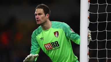 Howe denies Begovic falling-out