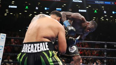 'Wilder punch would have KO'd anyone!'