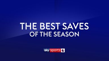 Premier League Saves of the Season