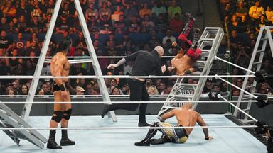 Best of Money in the Bank Ladder Matches