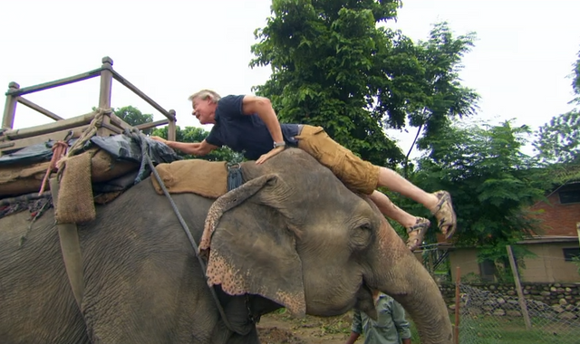 Animal charity Born Free drops Martin Clunes for riding elephant on ITV