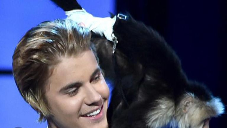 Celebrities who own monkeys 'morons'