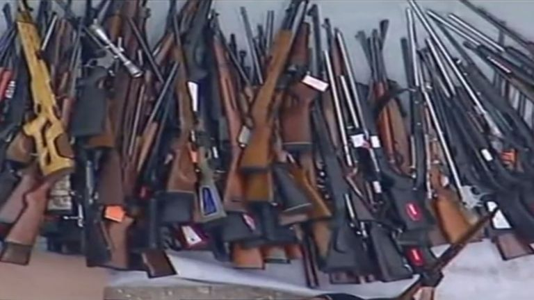 Hundreds of guns were seized in the Los Angeles home raid. Pic: KABC