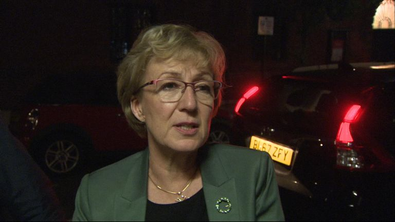Andrea Leadsom resigns