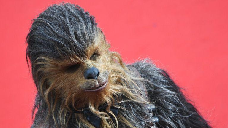 Chewbacca actor Peter Mayhew dies aged 74