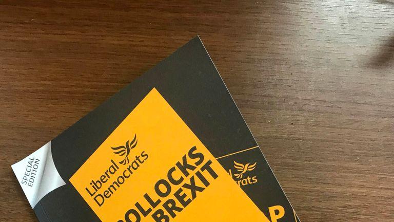 Liberal Democrats EU elections manifesto