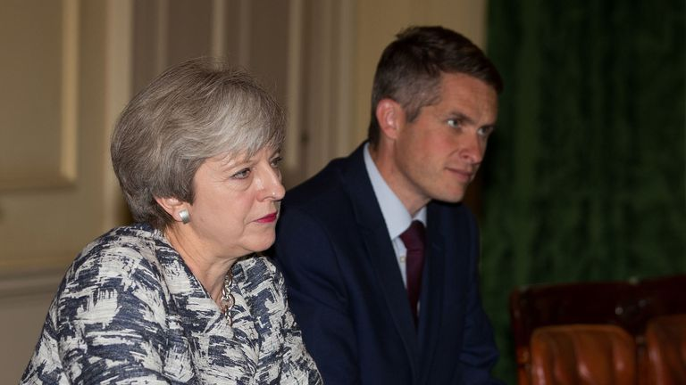 In a letter to the PM, Gavin Williamson said he 'strenuously' denies any involvement in a leak