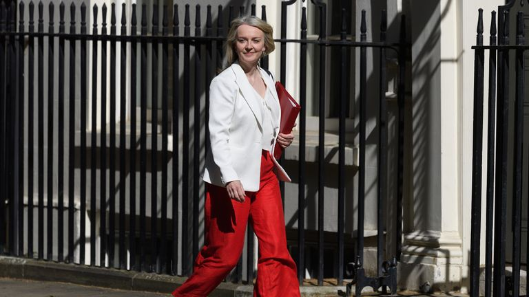 Liz Truss's proposals for the green belt are unlikely to go down well with many Tories