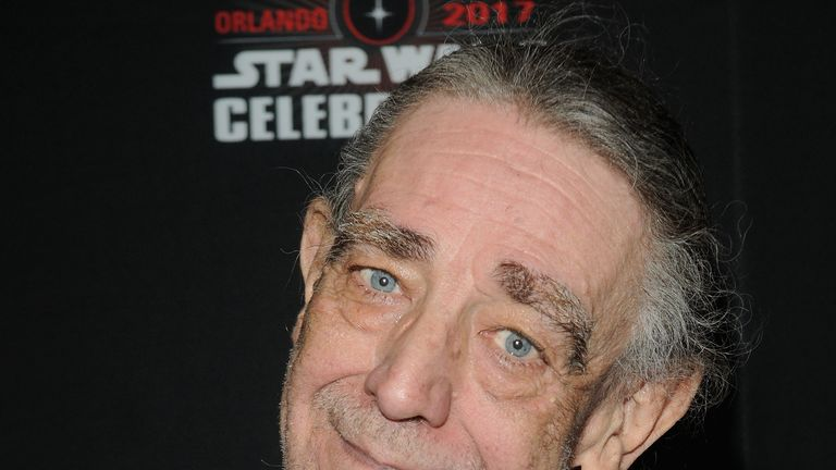 Peter Mayhew attends the 40 Years of Star Wars panel during the 2017 Star Wars Celebration at Orange County Convention Center on April 13, 2017 in Orlando, Florida