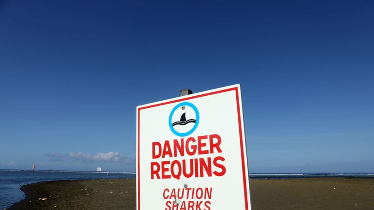 Reunion beach where water sports are banned because of sharks