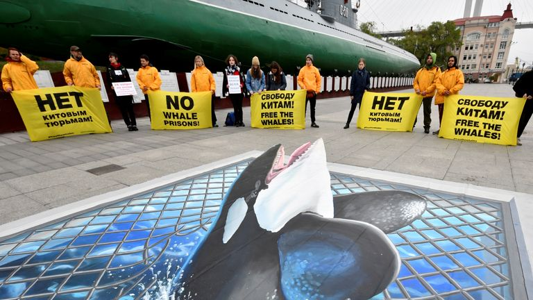 Greenpeace activists protesting against the 'whale prison'