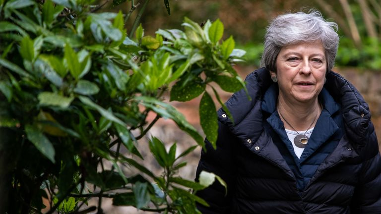 Theresa May has been described as a 'caretaker' PM