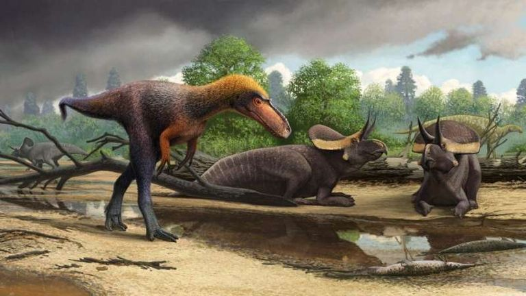 An artist's rendering of how Suskityrannus hazelae may have looked. Credit: Virginia Tech, Andrey Atuchin