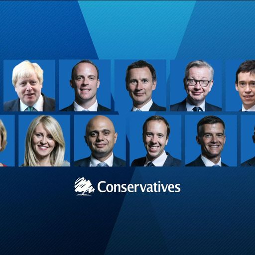 Who are the Tory leadership contenders - and where do they stand on Brexit