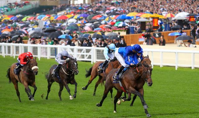 Royal Ascot: Blue Point stars, Circus Maximus stuns big two in St James's Palace Stakes