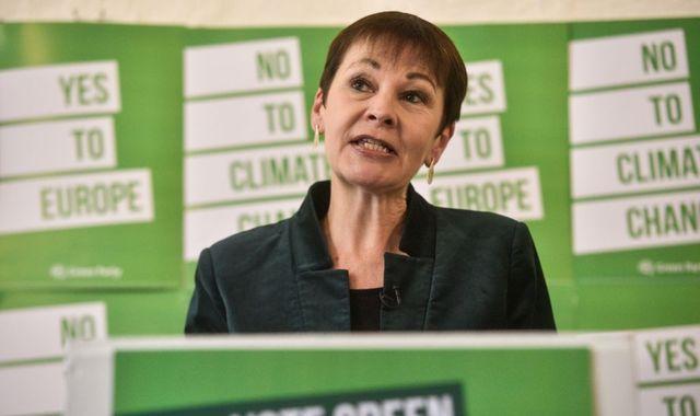 Caroline Lucas: Green MP investigated over £150 parliament tour offer