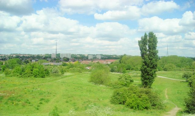Manhunt after six women attacked in South Norwood Country Park