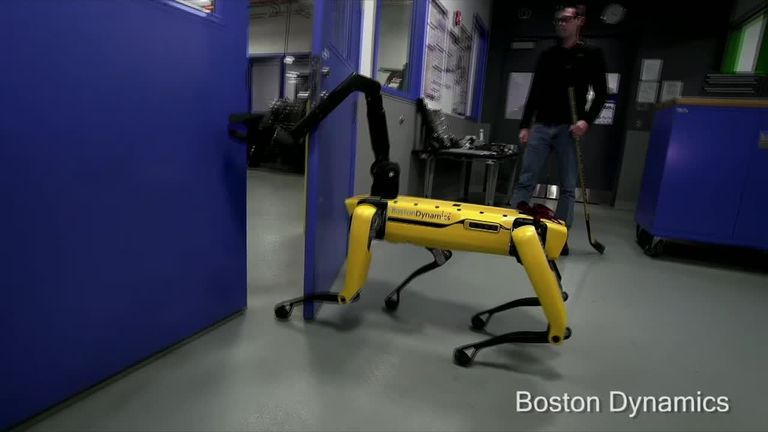 Boston Dynamics to hit market with robot dog 'by the end of the year'