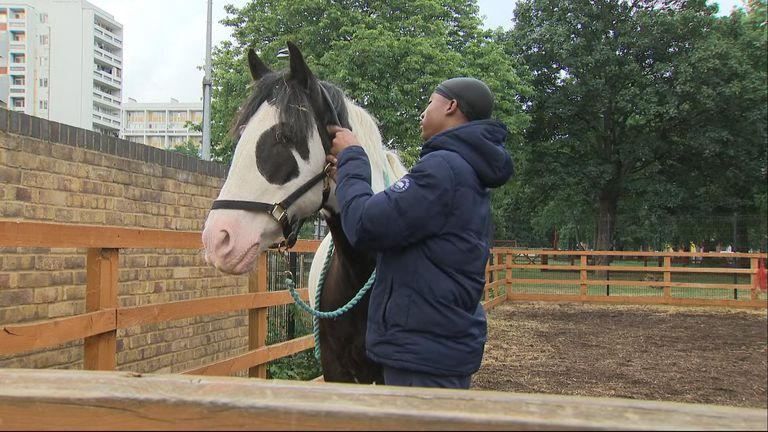 Horse riding and Polo in Brixton