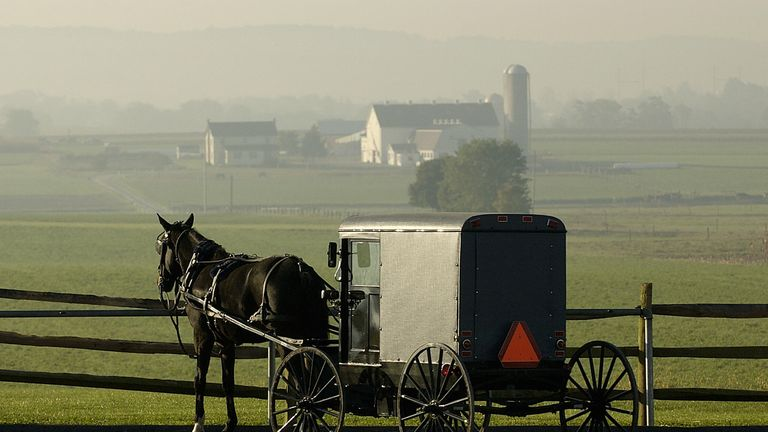 An Amish horse-drawn buggy is parked with a view of nearby farmland, 08 October, 2004, near Intercourse, Pennsylvania