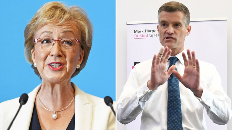 Tory leadership candidates Andrea Leadsom and Mark Harper