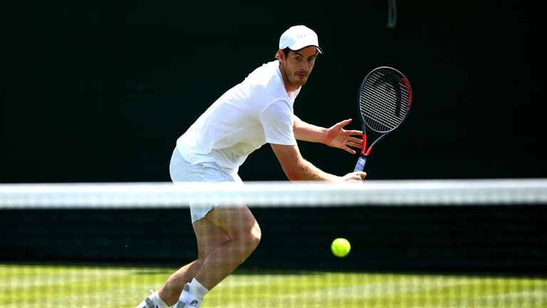 Andy Murray said Williams would be a 'pretty solid partner'