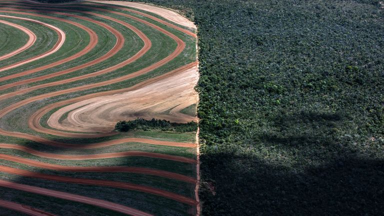 Undated handout photo issued by Greenpeace of a deforested area in Matopiba in Brazil as an area twice the size of the UK will have gone between 2010 and 2020 despite pledges by global brands to end deforestation, Greenpeace claims.