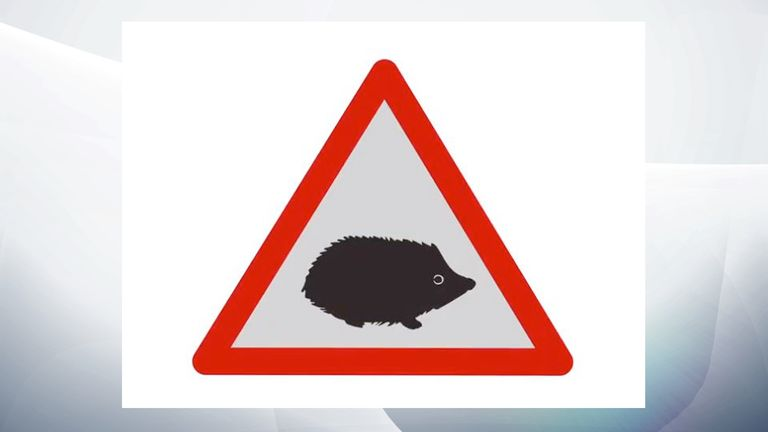 The signs will be placed in areas with large numbers of animals such as hedgehogs, otters, squirrels and badgers. Pic: DfT