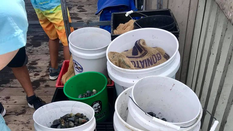 Divers in Florida retrieve 1,626 pounds of marine debris