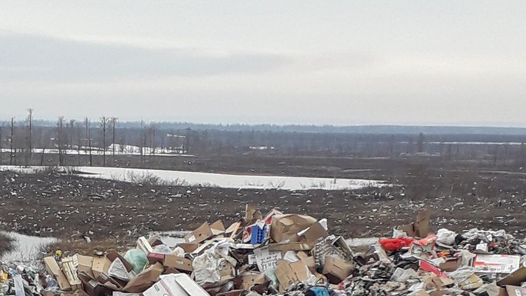 The bear desperately searched for food on a garbage dump