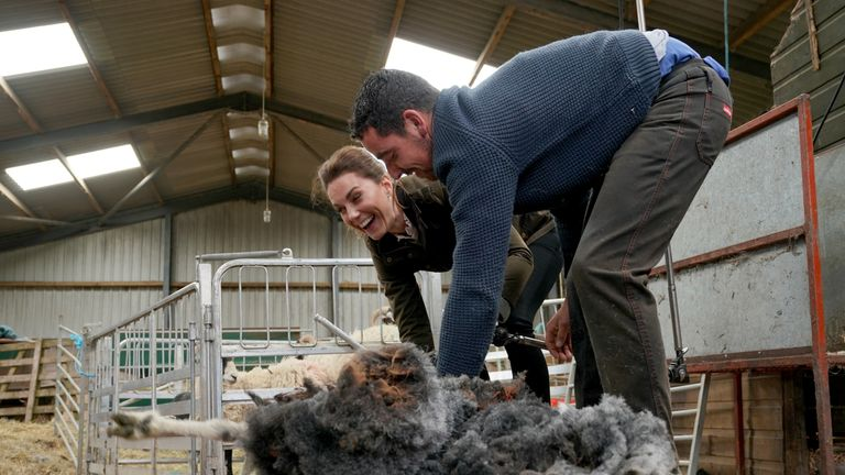 The Duchess of Cambridge laughs as she helps out with sheep shearing