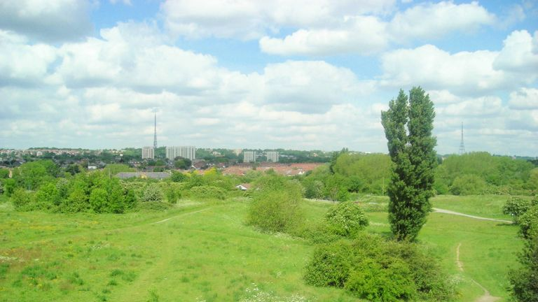 South Norwood Country Park. File pic